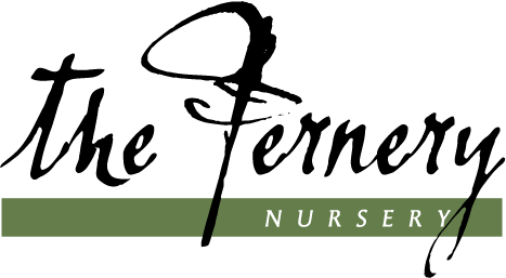 The Fernery Nursery Logo